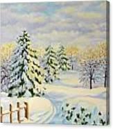 December Morning Canvas Print