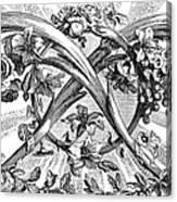 Decorative Engraving Canvas Print
