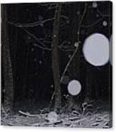 Deep Dark Quiet Canvas Print