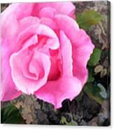 Deep Pink Watercolor Rose Blossom Canvas Print