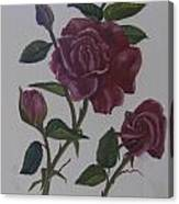 Deep Red Roses Canvas Print
