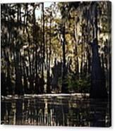 Deep Swamp Canvas Print