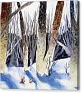 Deep Woods 1 Canvas Print
