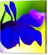 Deeply Blue Canvas Print