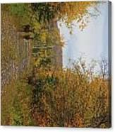 Deer In Fall Canvas Print