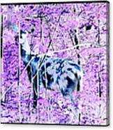 Deer In The Woods Inverted Negative Image Canvas Print