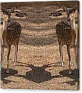 Deer Symmetry  Canvas Print
