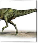 Deltadromeus Agilis, A Prehistoric Era Canvas Print