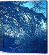 Denmark In Winter Canvas Print