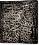Deposit Wooden Crate Canvas Print
