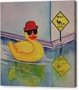 Derby Duck Canvas Print