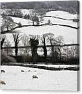 Derwent Valley, Derbyshire, England Canvas Print