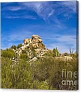 Desert Boulders Canvas Print
