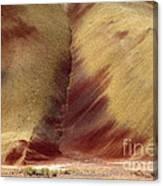 Desert Brushstrokes Canvas Print