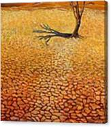 Desert Pan Canvas Print