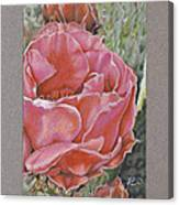 Desert Rose Canvas Print