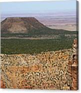 Desert Watch Tower View Canvas Print