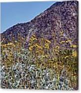Desert Yellow Canvas Print