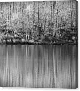 Desolate Splendor Bw Canvas Print