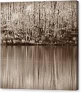 Desolate Splendor S Canvas Print