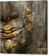 Detail Buddhas Lips Canvas Print