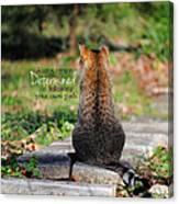 Determined Encouraging Cat Photo Canvas Print