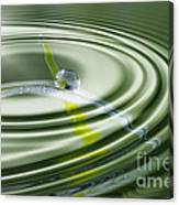 Dew Bead On The Blade Of Grass Canvas Print