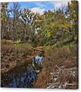 Diamond Creek Canvas Print