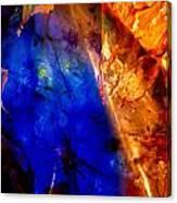 Dichotomy 2 Canvas Print