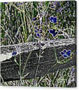 Digital Daisies Canvas Print