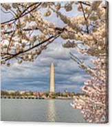 Digital Liquid - Cherry Blossoms Washington Dc 4 Canvas Print