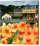 Dingle And Flower Pot Canvas Print