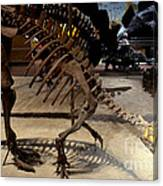 Dinosaurs Canvas Print