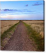 Dirt Road Through The Prairie Canvas Print