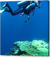 Diver In Deep Canvas Print