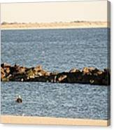 Diving Coney Island Canvas Print