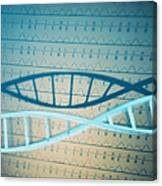 Dna And A Genetic Sequence Canvas Print
