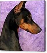 Doberman In Profile Canvas Print