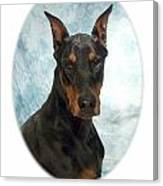 Doberman Pinscher 100  Canvas Print