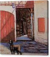 Dog And Barn Canvas Print