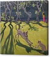 Dog And Monkey Canvas Print
