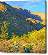 Dog Canyon Nm Oliver Lee Memorial State Park Canvas Print