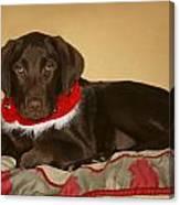 Dog With Christmas Collar Canvas Print