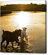 Dogs At Sunset Canvas Print
