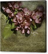 Dogwood Days Canvas Print