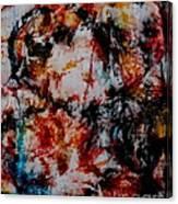 Dolaniiccii Canvas Print