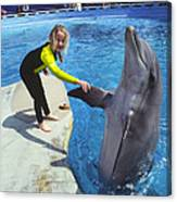 Dolphin And Child Canvas Print