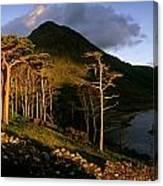 Doo Lough Pass, County Mayo, Ireland Canvas Print