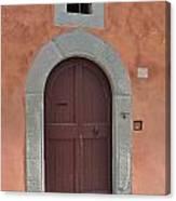 Door A1 Canvas Print