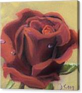Doris's Rose Canvas Print